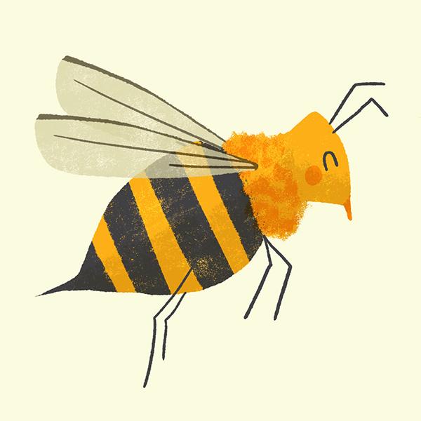 2020 Rosemont Graintheque Abeille Bee